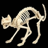 Skeleton Cat Crazy Bones Prop