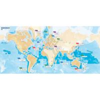 Navionics Navionics+ Updates Flexible Coverage World - microSD [MSD/NAVUPDATES-W]