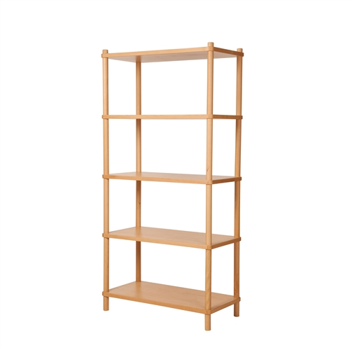 Sean Dix Bi-Color Book Shelves In American Maple