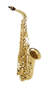 "<b><inline style=""font-family: Arial; color: rgb(192, 80, 77); font-size: 18px;"">Selmer AS42 Pro Alto Saxophone</inline></b"