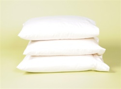 Organic Case Wool Pillow - Specialty Sizes