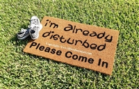 I'm Already Disturbed Please Come In or Welcome Funny Custom Handpainted Welcome Doormat by Killer Doormats