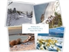 Photo Christmas Cards 2020 - Pack of 8