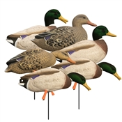 Magnum Full-Body Mallard, Variety Pk, Flocked Heads