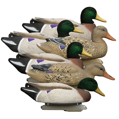 Battleship Mallard, Foam Filled, Flocked Heads