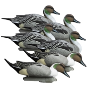 Battleship Pintail, Foam Filled, All Drakes