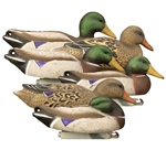 Full-Size Mallard, Foam Filled