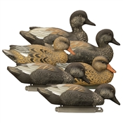 Standard Gadwall, Foam Filled