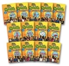 Standard Deviants School Spanish 13 Pack