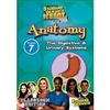 Standard Deviants School Anatomy Module 7: The Digestive And Urinary System DVD