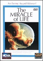NOVA: The Miracle Of Life