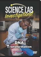 Science Lab Investigations! DNA Transformation