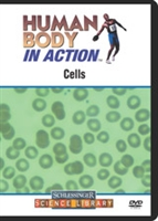 Human Body In Action: Cell
