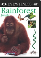 Eyewitness DVD Series: Rainforest (Jungle)