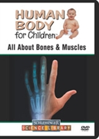 Human Body For Children: All About Bones & Muscles