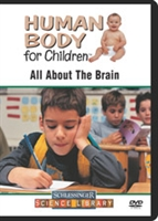 Human Body For Children: All About The Brain