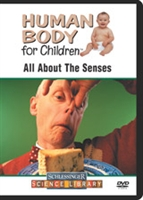 Human Body For Children: All About The Senses