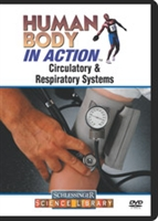 Human Body in Action: Circulatory & Respiratory Systems