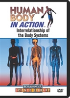 Human Body in Action: Interrelationship of the Body Systems