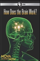 NOVA: How Does the Brain Work?