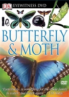 Eyewitness DVD Butterfly & Moth