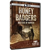 Honey Badgers: Masters of Mayhem DVD