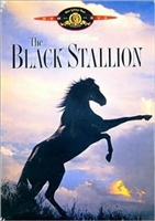 The Black Stallion DVD