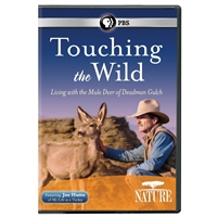 NATURE: Touching the Wild: Living with the Mule Deer of Deadman Gulch DVD