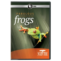 NATURE: Fabulous Frog DVD