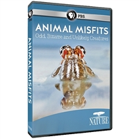 NATURE: Animal Misfits DVD