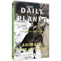 Daily Planet in the Classroom Wildlife: Animals: A Day in the Life DVD