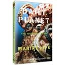 Daily Planet in the Classroom Wildlife: Marine Life DVD