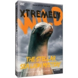 Xtremely Wild: The Stellar Sea Lion Mystery DVD