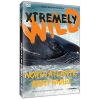 Xtremely Wild: The North Atlantic's Most Endangered Whale- The Rightwhale DVD
