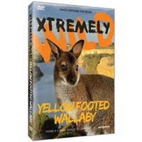 Xtremely Wild: Yellow Footed Wallaby DVD