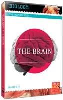 Biology of the Human Body: Brain, The
