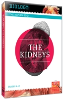Biology of the Human Body: Kidneys, The