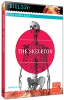 Biology of the Human Body: Skeleton, The