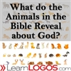 What do the Animals in the Bible Reveal about God?