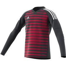 Adidas Youth AdiPro 18 Goalkeeper Jersey (Dark Grey/Unity Pink/White)