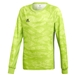 Adidas Youth AdiPro 19 Goalkeeper Jersey (Semi Solar Green)