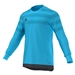 Adidas Youth Entry 15 Goalkeeper Jersey (Bright Cyan/Dark Grey)