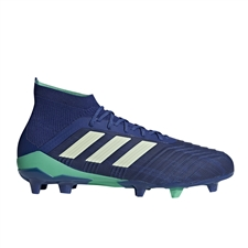 Adidas Predator 18.1 FG Soccer Cleats (Unity Ink/Aero Green/Hi-Res Blue)