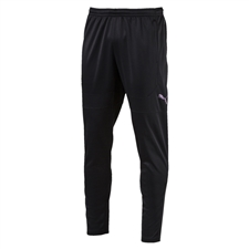 Puma ftblNXT Training Soccer Pants (Puma Black)