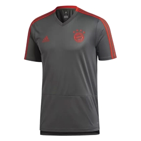 Adidas Bayern Munich Training Jersey (Utility Ivy/Red)