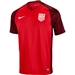 Nike Youth USA 3rd Stadium Soccer Jersey (Gym Red/Metallic Silver)