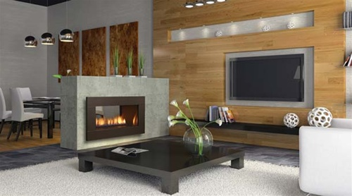 Regency Hz42ste See Through Contemporary Gas Fireplace