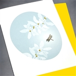 "Blanks "" Dragonfly ""  BLK09 Greeting Card"