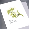 "Sympathy  "" Silver Bird, Green Branch""  SY07 Greeting Card"