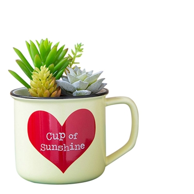 "2-In-1 ""Cup of Sunshine"" Succulent & Coffee Mug"